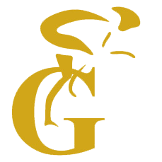GOLDMAN SALUD
